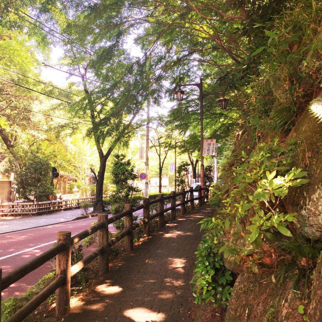深大寺は緑豊かな場所です♪